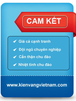 cam-ket-dvd